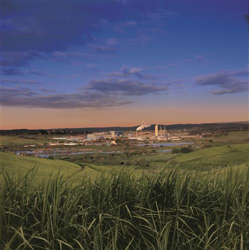 Sappi's Stanger site is surrounded by its primary fibre source in KwaZulu-Natal